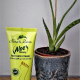 foot care cream, aloe vera